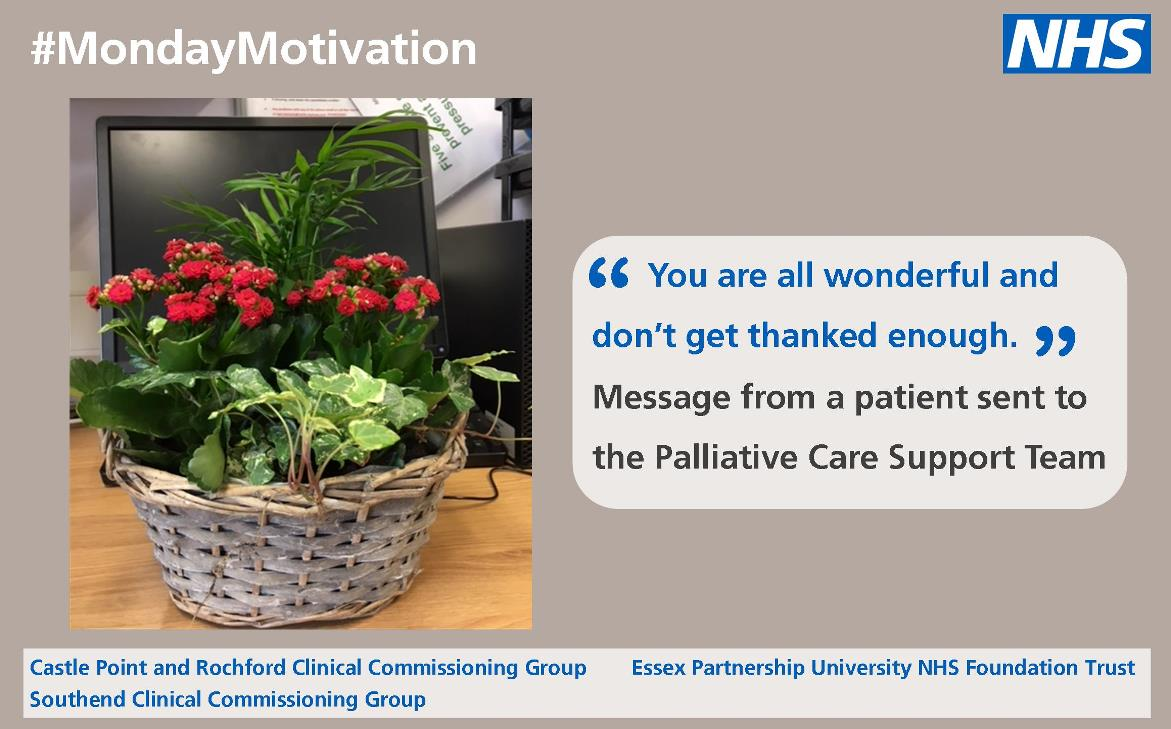 Thank you to palliative care team